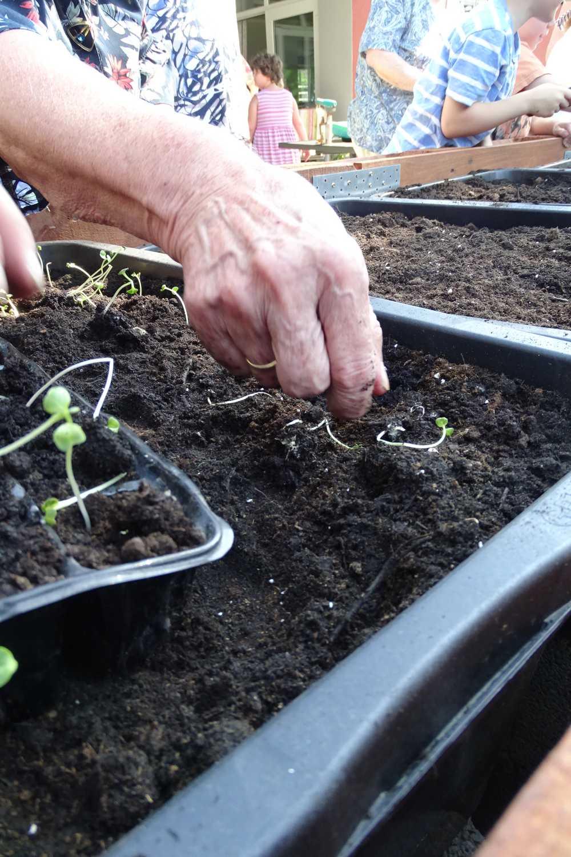 ASB Projektwoche-5-liebevoll werden die ersten Pflanzen gesetzt.JPG
